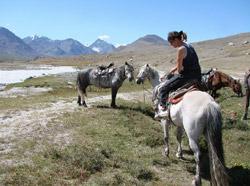 Конные походы по Монголии и Алтаю