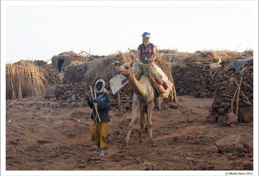 Путешествие на верблюде по Эфиопии международного отдела Клуба АТО