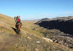 Монгольские лошади и туры в монголии